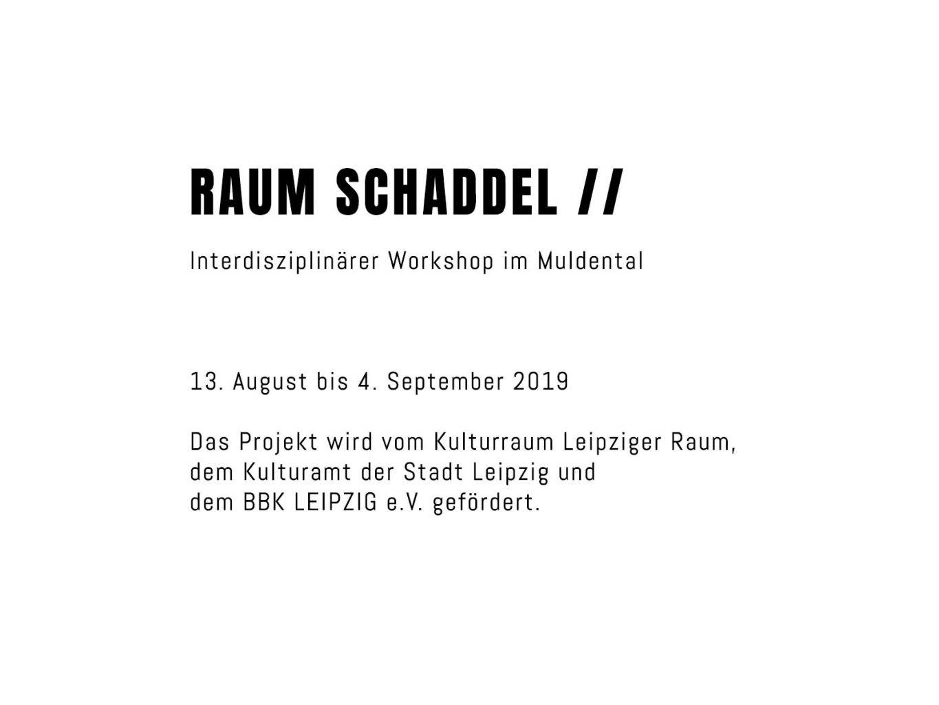 Raumschaddel Workshop